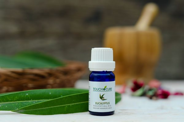 Eucalyptus Essential Oil – A WONDER DRUG